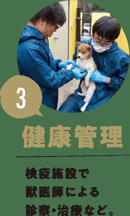 3.健康管理 検疫施設で獣医師による診察・治療など。