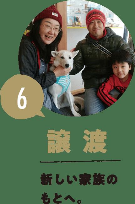 6.譲渡 新しい家族のもとへ。