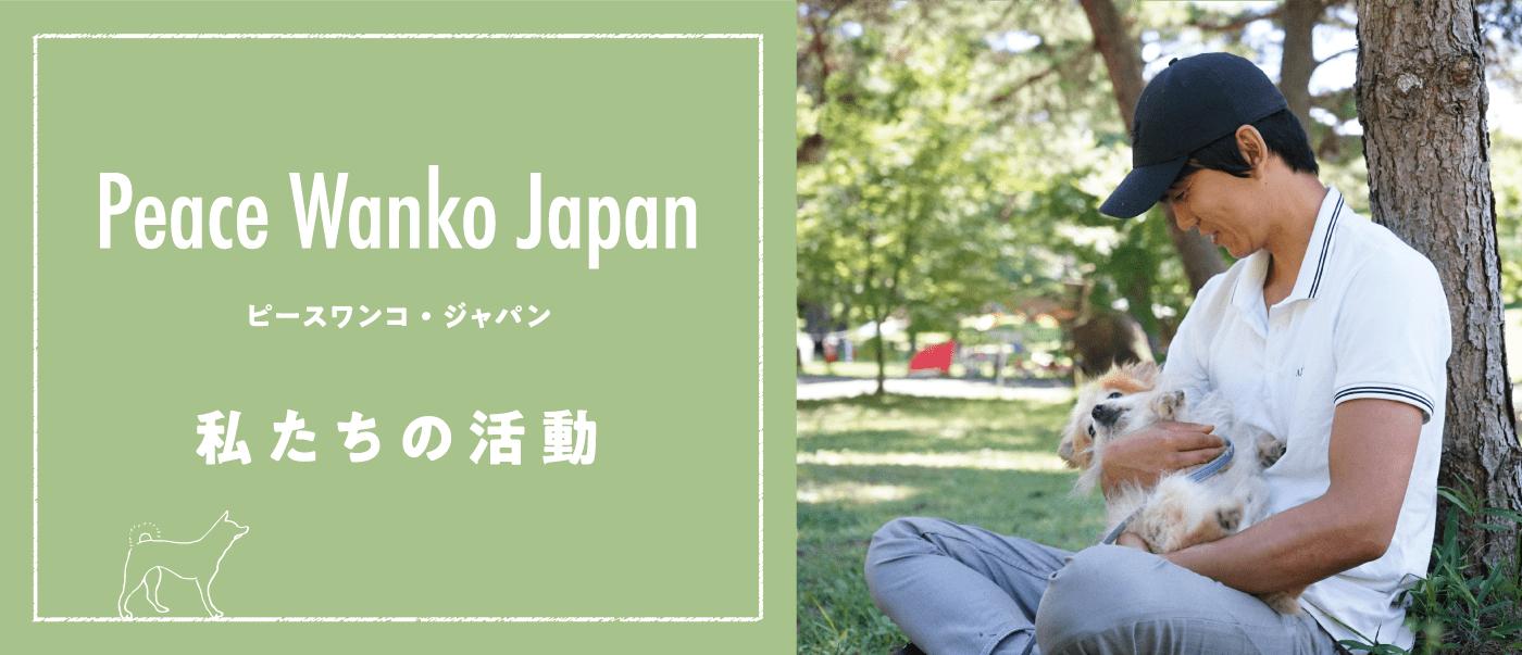 私たちの活動 Peace Wanko Japan ピースワンコジャパン