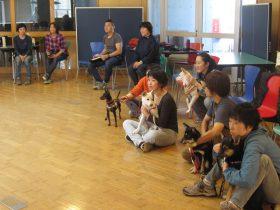 犬目線で感じて学ぶ トレーナー育成のPRODOGスクール開校