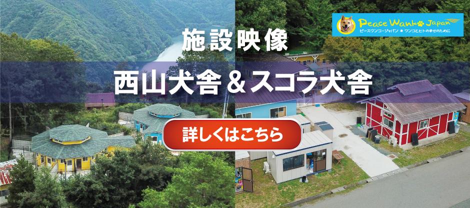 西山/スコラシェルター施設映像紹介