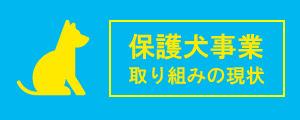 ピースワンコ・ジャパン保護犬事業の取り組みの現状