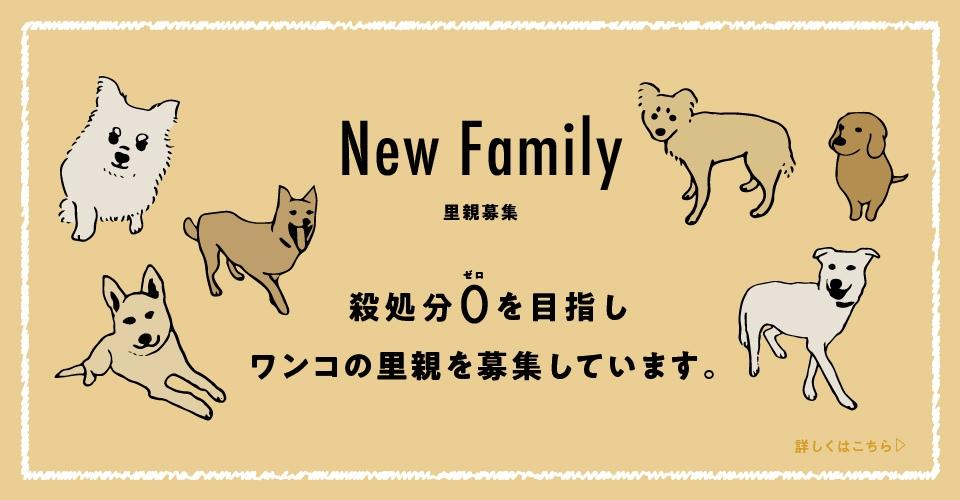 New Family